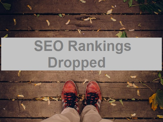 SEO Rankings Dropped