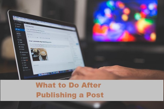 What to do after publishing a post