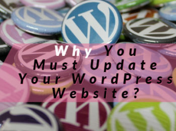 update WordPress websites Now