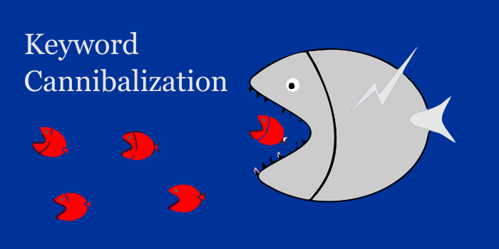 What is Keyword Cannibalization